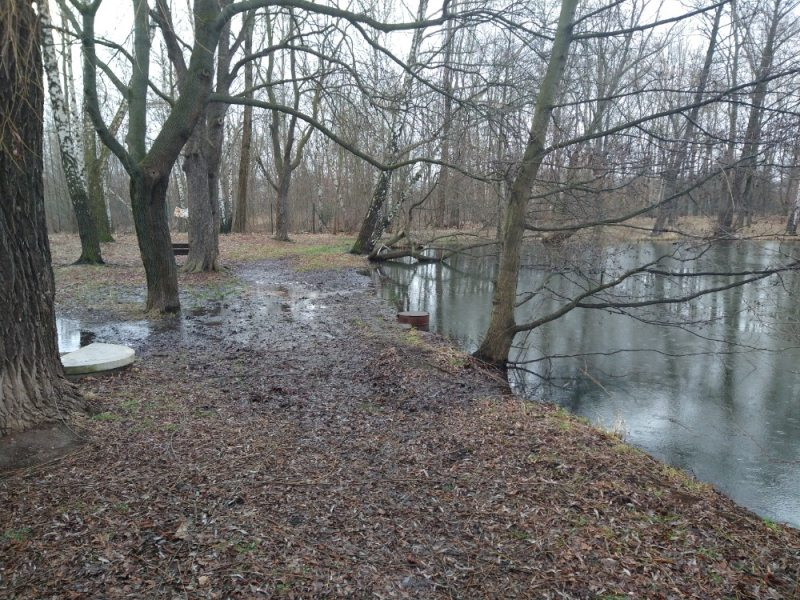 rybníček před opravou